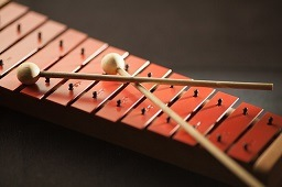 Picture of an Xylophone