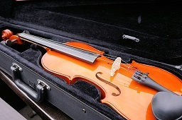 An image of Violin and case